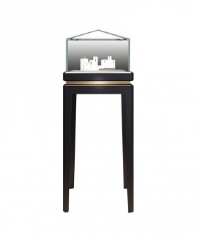 High End Floor Free Standing Jewelry Display Case