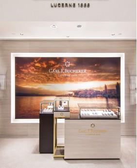 Luxury Watch Display Showcase